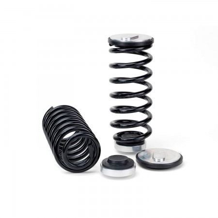 Arnott New Rear Coil Spring Conversion Kit - 97-02 Lincoln Continental (D186)