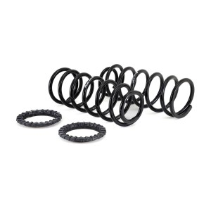 Arnott New Rear Coil Spring Conversion Kit - 03-09 Lexus GX 470/ Toyota Land Cruiser Prado (J120) - Left or Right
